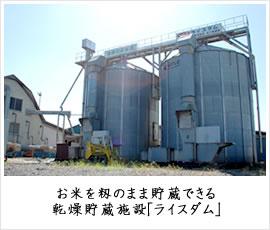 お米を籾のまま貯蔵できる乾燥貯蔵施設「ライスダム」